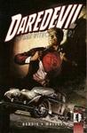 Daredevil, Vol. 11: Golden Age