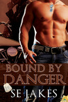Bound by Danger (Men of Honor, #4)