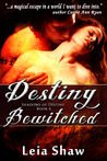 Destiny Bewitched (Shadows of Destiny, #4)