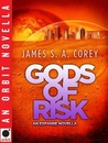 Gods of Risk (The Expanse, #2.5)