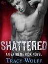 Shattered (Extreme Risk, #2)