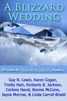 A Blizzard Wedding (Lightning Strikes #3)