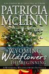 Wyoming Wildflowers: The Beginning (Wyoming Wildflowers, #0.5)