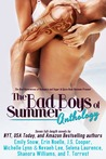 The Bad Boys of Summer Anthology