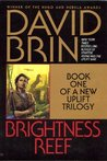 Brightness Reef (Uplift Storm Trilogy, #1)