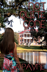 Not Quite Gone (Lowcountry Mysteries, #4)