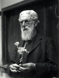 D'Arcy Wentworth Thompson