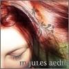 M. Jules Aedin