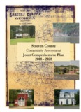 Screven County Community Assessment Joint Comprehensive Plan 2008
