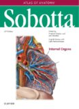 Sobotta Atlas of Anatomy Internal Organs