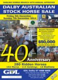 dalby approved australian stock horse sale 5