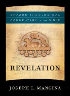 Revelation (Brazos Theological Commentary)