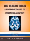 The Human Brain: An Introduction to its Functional Anatomy