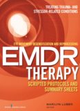 Eye movement desensitization and reprocessing (EMDR) therapy scripted protocols and summary sheets. Treating trauma- and stressor-related conditions