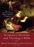 Scripture's doctrine and theology's Bible : how the New Testament shapes Christian dogmatics