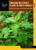 Foraging wild edible plants of North America : more than 150 delicious recipes using nature's