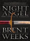 Night Angel Trilogy (The Way of Shadows; Shadow's Edge; Beyond the Shadows)