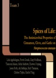 Spices of Life: The Antimicrobial Properties of Garlic, Cinnamon, and Clove on Streptococcus mutans