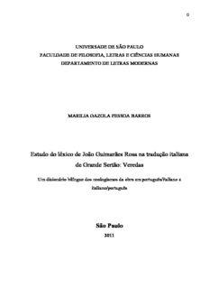 Estudo do léxico de João Guimarães Rosa na tradução italiana de Grande Sertão