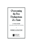 Overcoming the Five Dysfunctions of a Team - Party Man Josh