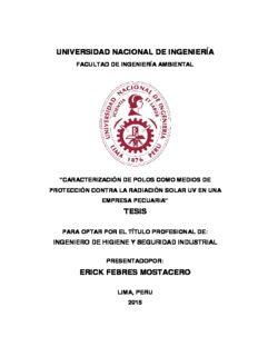 universidad nacional de ingeniería tesis erick febres mostacero
