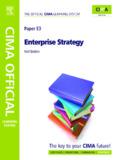 CIMA E3 Enterprise Stategy