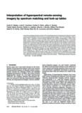 Interpretation of hyperspectral remote-sensing imagery by spectrum matching and look-up tables