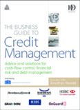 The Business Guide to Credit Management: Advice and solutions for cash-flow control, financial risk and debt management (Business Guides)