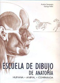 Escuela de dibujo de anatomía: humana, animal, comparada