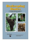 Beekeeping Basics Beekeeping Basics - Department of Entomology