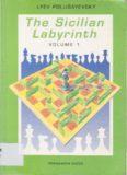 The Sicilian Labyrinth, Vol. 1 (Pergamon Russian Chess Series)