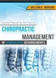Chiropractic Management of Lumbar Disc Herniations