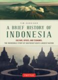 A brief history of Indonesia : sultans, spices, and tsunamis : the incredible story of Southeast