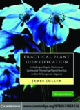 Practical plant identification : including a key to native and cultivated flowering plants in north temperate regions