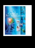 snell clinical neuroanatomy 7th edition
