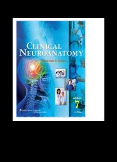 snell clinical neuroanatomy 7th edition