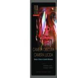 Camera obscura, camera lucida : essays in honor of Annette Michelson