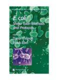 E. coli: Shiga Toxin Methods and Protocols (Methods in Molecular Medicine)