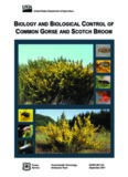biology and biological control of common gorse and scotch broom