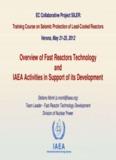 IAEA programme on Fast Reactor Technology - S. Monti - SILER