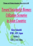 Kinya SAKANISHI - 10th Biomass-Asia Workshop