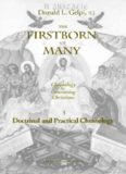 The Firstborn of Many: Doctrinal and Practical Christology (Marquette Studies in Theology, #20.)