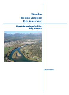 Site-wide Baseline Ecological Risk Assessment Libby Asbestos Superfund Site Libby, Montana