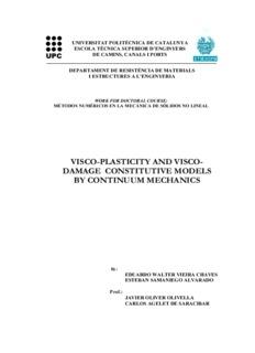 visco plasticity and visco damage constitutive models by continuum