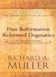 Post-Reformation Reformed Dogmatics - The Divine Essence and Attributes Volume 3