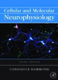 Cellular and Molecular Neurophysiology, Third Edition (Hammond, Cellular and Molecular Neurophysiology)