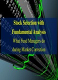 Stock Selection with Fundamental Analysis