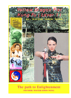 Yellow Dragon Fist Kung Fu ( Lever 1 )