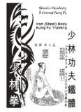 Iron Body Kung Fu training - Shaolin Kung Fu