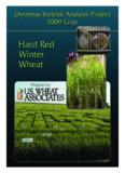 Hard Red Winter Wheat Hard Red Winter Wheat